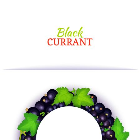 Semicircle colored frame composed of delicious black currant fruit. Vector card illustration. Blue currant berry half-round frame for design of food packaging juice breakfast cosmetics tea detox diet. Banque d'images
