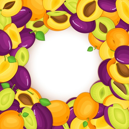 Round colored frame composed of delicious apricots plum fruit. Vector card illustration. Circle hole apricots plums frame. Ripe fruits for design of food packaging juice breakfast cosmetic detox diet 向量圖像