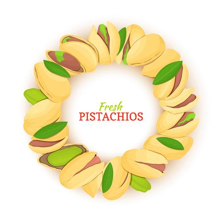 Round frame composed of pistachios nut. Vector card illustration. Nuts filbert frame, pistacia fruit in the shell, shelled, leaves for packaging design food, butter, pistachio oil, cosmetics cream.