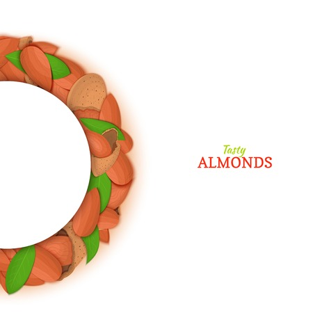 Semicircle frame composed of almond nut. Vector card illustration. Nuts filbert frame, hazelnut fruit in the shell, shelled, leaves for packaging design food, butter, oil, detox cosmetics cream. Banque d'images - 93549797