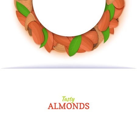 Semicircle frame composed of almond nut. Vector card illustration. Nuts filbert frame, hazelnut fruit in the shell, shelled, leaves for packaging design food, butter, oil, detox cosmetics cream