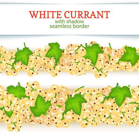 White currant fruit horizontal seamless borders. Vector illustration card Wide and narrow endless strip with black currant berries for design of food packaging juice breakfast, cosmetics, tea, detox. Çizim