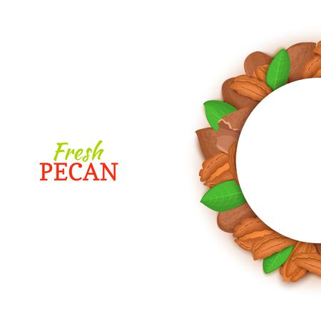 Pecan nuts in half-round shape for a design of food packaging juice, breakfast, cosmetics, tea, detox, and diet.