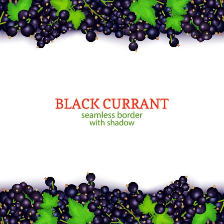 Black currant fruit horizontal seamless borders. Vector illustration card Wide and narrow endless strip with white currant berries for design of food packaging juice breakfast, cosmetics, tea, detox.