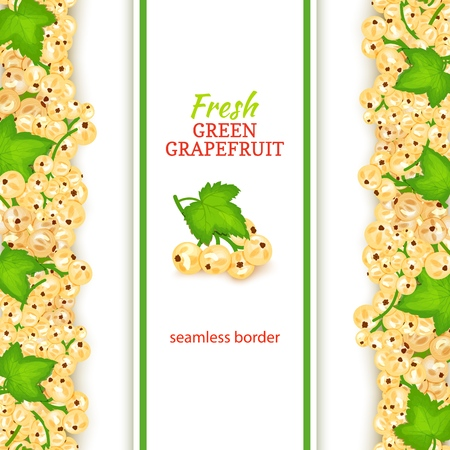 White currant fruit vertical seamless borders. Vector illustration card Wide and narrow endless strip with white currant berries for design of food packaging juice breakfast, cosmetics, tea, detox Çizim