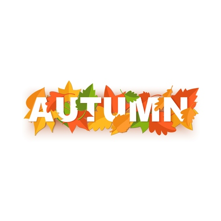 Word AUTUMN composition with green yellow red leaves on white background in paper cut style. Fall leaf realistic letters for design poster, banner, flyer T-shirt printing. Vector illustration