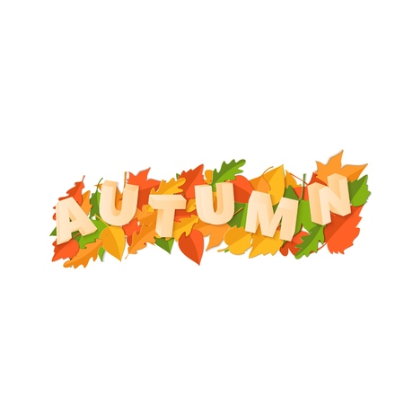 Word AUTUMN composition with green yellow red leaves on white background in paper cut style. Fall leaf 3d realistic letters for design poster, banner, flyer T-shirt printing. Vector illustration Illustration