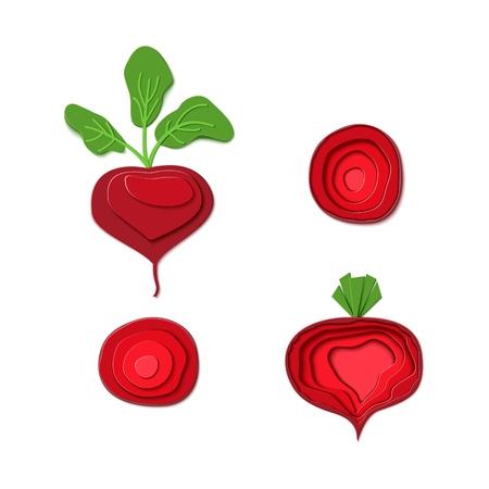 紙切り赤いビートのセット。ベクターペーパーカットは、熟したビートルート全体とスライスの形で設計をカット。ベクターの図。ペーパーアップリケアートスタイルの根菜食。折り紙のコンセプト。 ベクターイラストレーション
