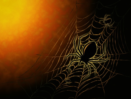 spiderweb and big spider on dark background photo