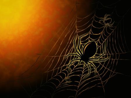 cobweb: spiderweb and big spider on dark background