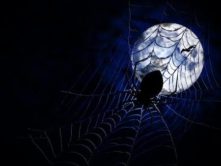 springe: spiderweb and big spider on dark background