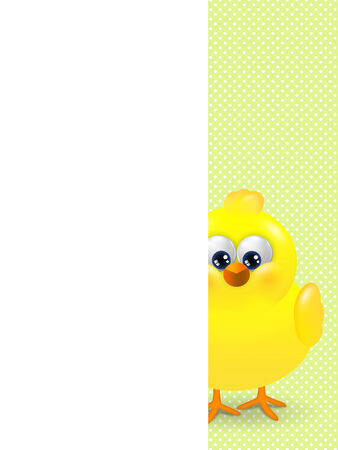 easter chick looks from behind the plate with place for text Stock Photo