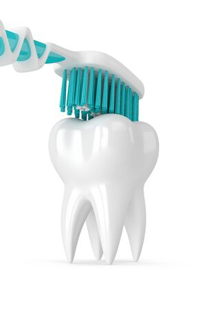 bristles: 3d render of toothbrush cleaning tooth isolated over white background