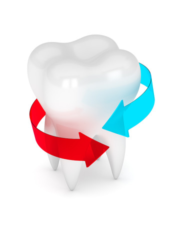 3d render of tooth with arrows isolated over white Stock Photo - 81508285