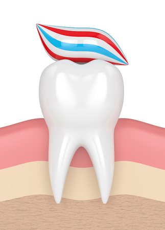 잇몸에 치약의 복용량과 치아의 3d 렌더링