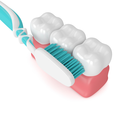 3d render of teeth in gums with toothbrush over white Stockfoto