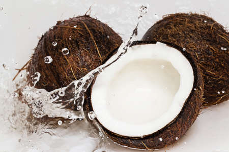 Fresh coconuts and water splash photo