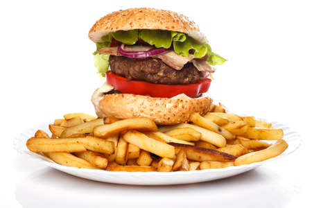 Burger and fries on the plate photo