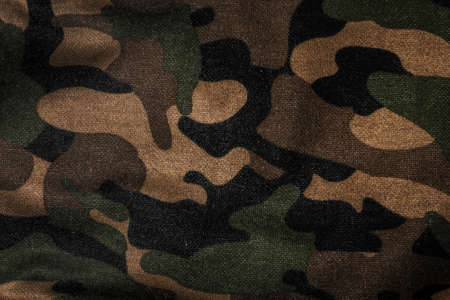 Texture of a camouflage fabric