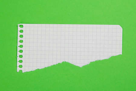 Torn piece of checkered paper  on green background