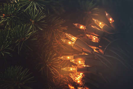 Christmas lights and branches of spruce on wooden surface