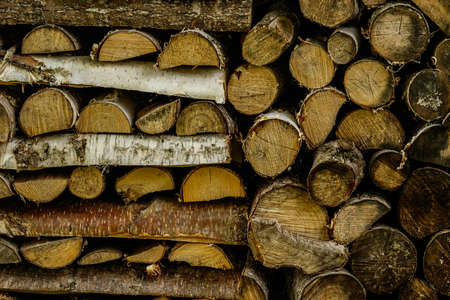 depot: Stack of firewood in the depot