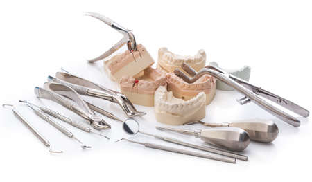 Gypsum model of jaws and  different dental tools