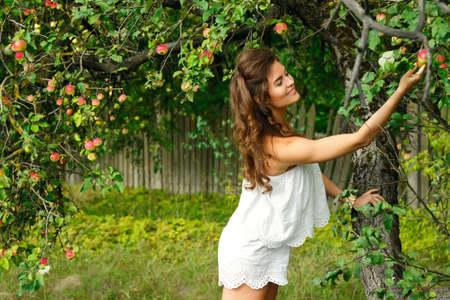 Young beautiful woman and apple tree in the garden Stock Photo