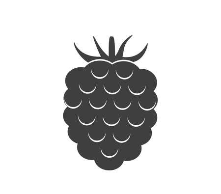 Raspberry icon. Raspberry vector illustration.