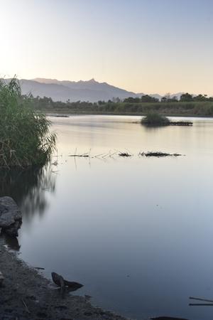 River background. 版權商用圖片
