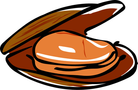 mussel: Mussel Illustration