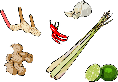 lemon grass: Thai Herb
