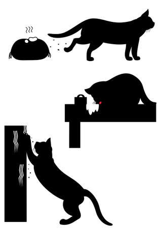 excrement: bad cats action