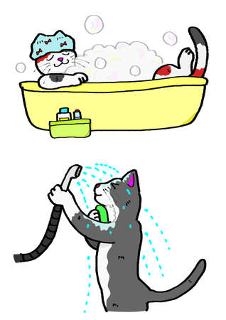 cleaness: bathing cats