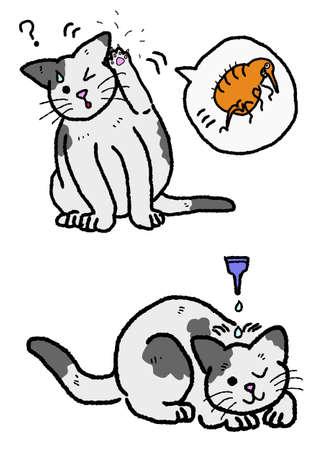 extermination: cat flea extermination Illustration