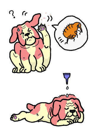 extermination: dog flea extermination Illustration