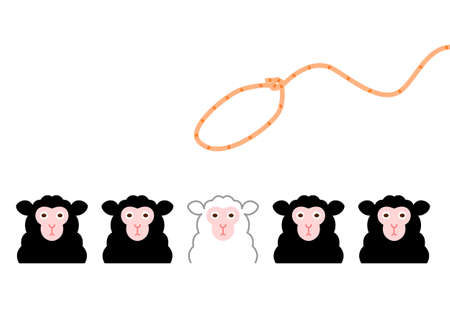 Conceptual of trying to catch a white sheep among the black sheeps  Illustration