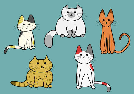 himalayan cat: five cats Illustration