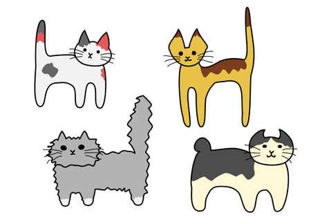 bobtail: standing cats