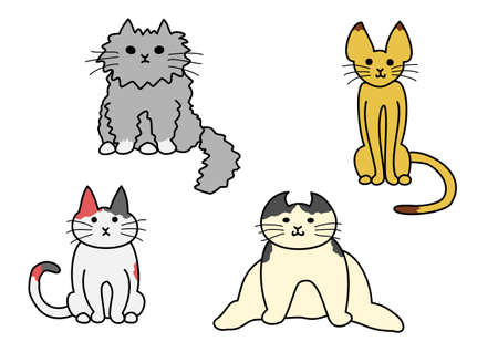 black haired: sitting cats
