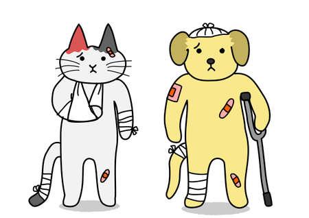calico: dog and cat,injury Illustration