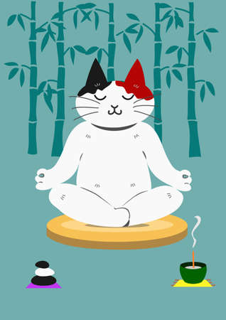 meditation stones: meditating cat