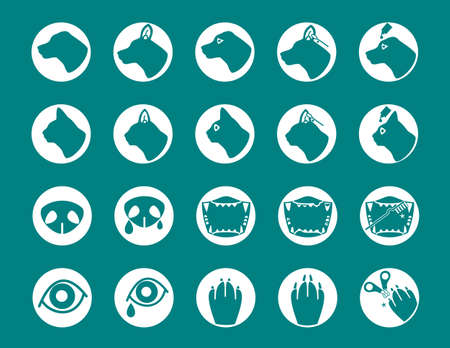 animal parts: icon set of Dog and cat care