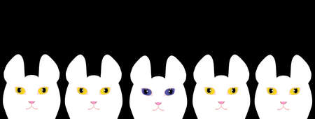 Yellow eyed white cats and a blue eyed white cat Illustration