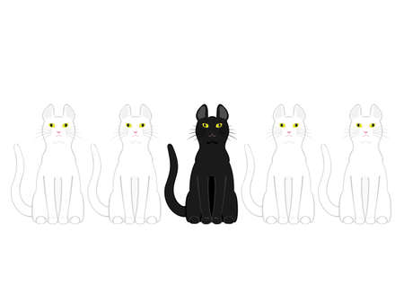 front of the eye: black cat in white cats
