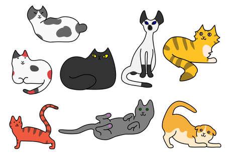 Cat pose variety