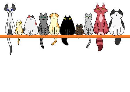 Katten front in een rij met een kopie ruimte