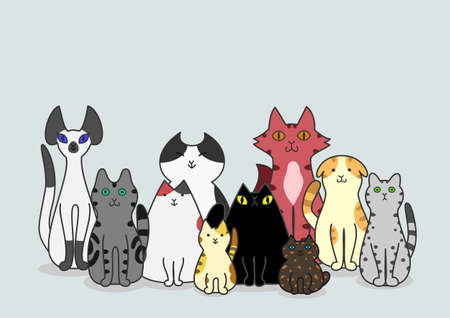 calico cat: Cats group