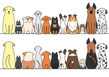 breeder: dogs in a row with copy space, front and back