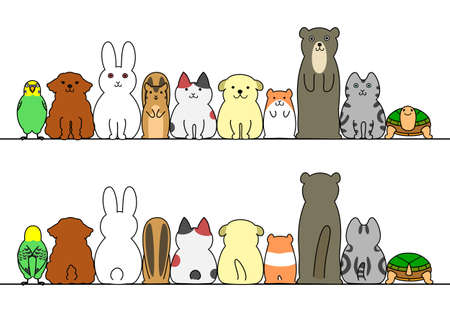 in a row: pet animals in a row with copy space, front and back